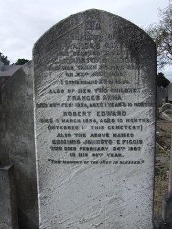 Robert Edward Figgis