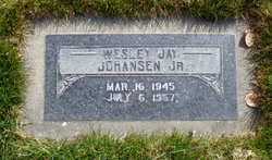 Wesley Jay Johansen, Jr