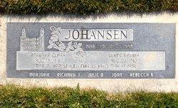 Vernon Peter Johansen
