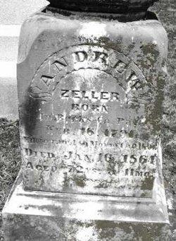 Andrew P. Zeller