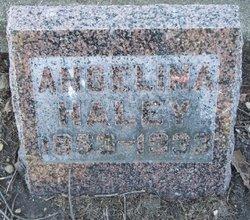 Angelina Cordelia <I>Sherman</I> Haley