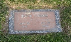 David Harker