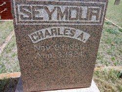 Charles A. Seymour
