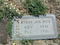 Bobby Joe Bice
