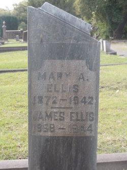 Mary A Ellis