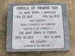 Eugene Abram Noe