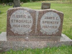 """James Elijah """"Jim"""" Springer"""