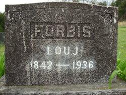 Lou J. Forbis