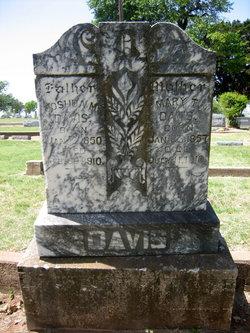 Mary Palistine <I>Johnson</I> Davis