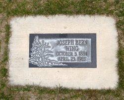 Joseph Burn Wing
