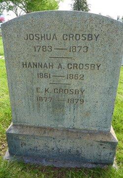 Hannah A Crosby