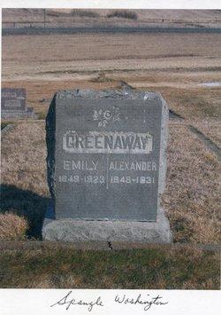Alexander Greenaway