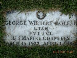 George Wilbert Golesh