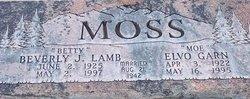 Elvo Garn Moss