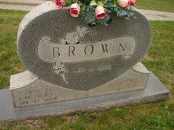 James Ernest Brown