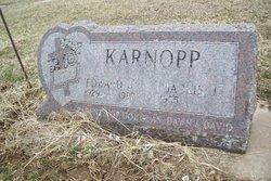 Edward Bernard Karnopp