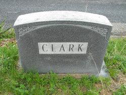Viola S <I>Fredman</I> Clark