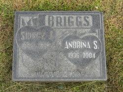 Sidney James Briggs