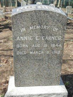 Ann Elizabeth <I>Van Sise</I> Carnes