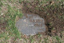 Adelia Angeline <I>French</I> Baird