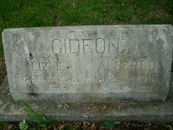 Albert Gideon