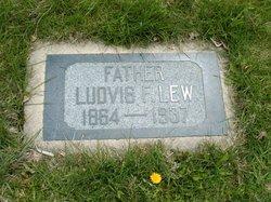 Ludvig F Lew