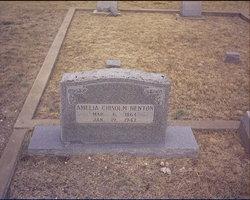"Amelia May ""Millie"" <I>Chisolm</I> Benton"