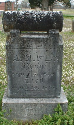 Amanda Mamie <I>Doak</I> Fly