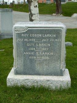 Annie S Larkin