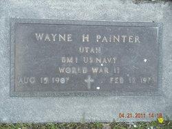 Wayne Painter