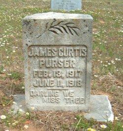 James Curtis Purser