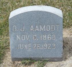Ole J Aamodt
