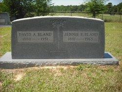 David A. Bland