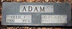 Ollie C Adams