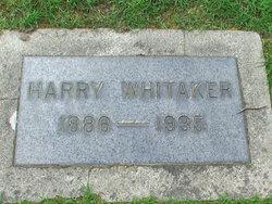 Harry Whitaker