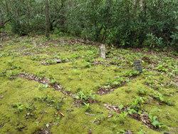 Jasper Mellinger Cemetery