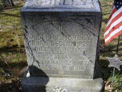 Frances Anna <I>Kohler</I> Morley