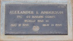 Alexander L Anderson