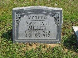 Amelia J. <I>DeWeese</I> Miller