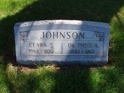 "Dr Theodore Andrew ""Theo"" Johnson"