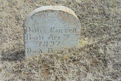Dallis Carter