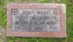 Joan Marie Albin