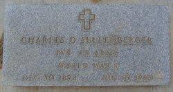 "Charles Dayton ""Dutch"" Sullenberger"