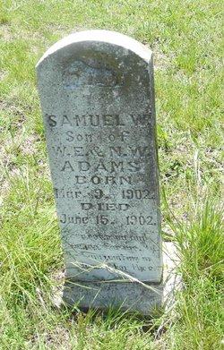 Samuel W Adams