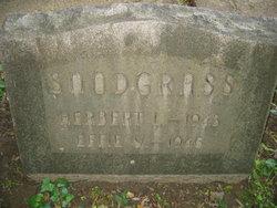 Effie <I>Young</I> Snodgrass