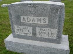 Nettie A <I>Sype</I> Adams
