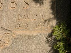 David Crockett Hobbs
