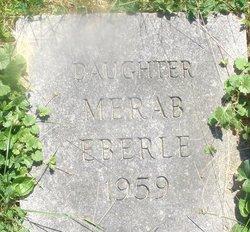 Merab S. Eberle