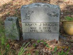Karen J Briggs