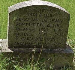 Abraham Haldeman